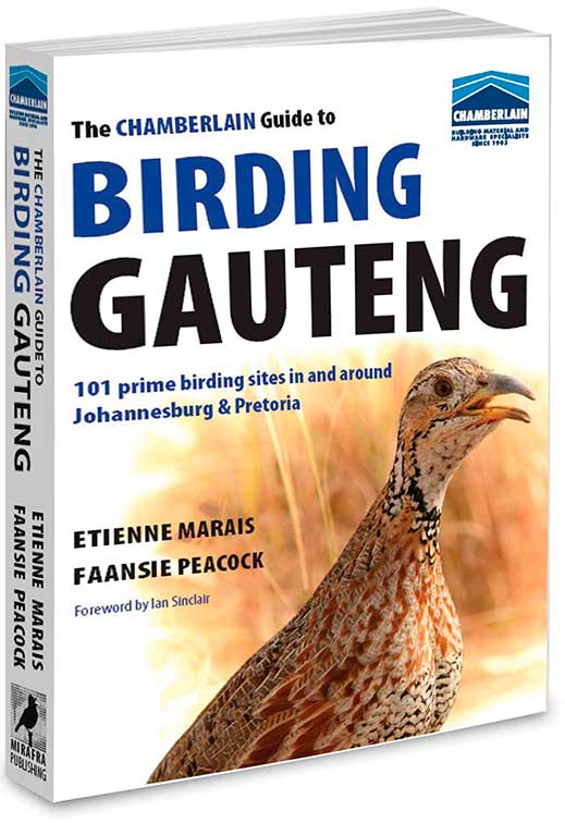 The Chamberlain Guide to Birding Gauteng