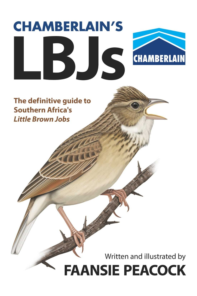 Chamberlain's LBJs front cover