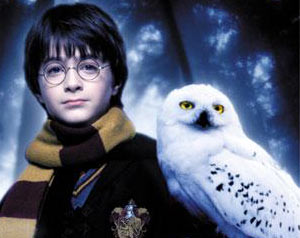 Harry and Hedwig