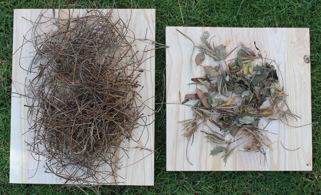 Plant material used in nest