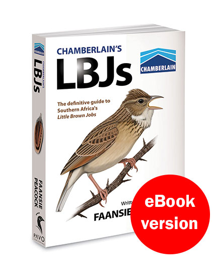 Chamberlain's LBJs eBook version