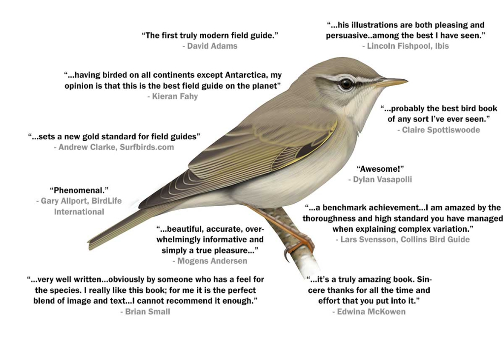 Willow Warbler book reviews