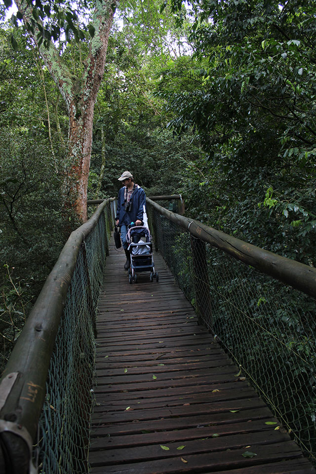 Ngoye Forest: saw the barbet, got the T-shirt