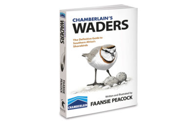 bookstanding_waders_thumbblog2