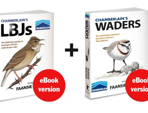 WADERS now available in eBook format!