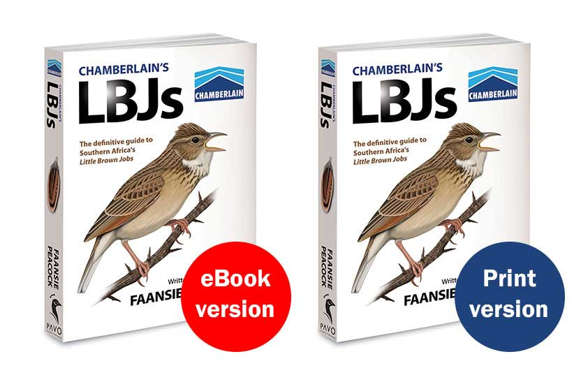 Chamberlain's LBJs covers
